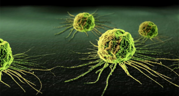 Huge breakthrough: Miracle treatment destroys cancer cells