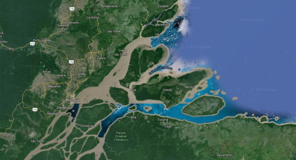 Scientists shocked to find massive, hidden reef at mouth of Amazon river